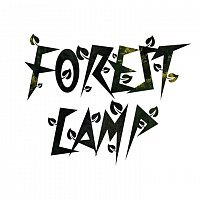 Forest camp intro