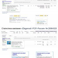 elegance-it.ru // Yandex Direct+Google Adwords